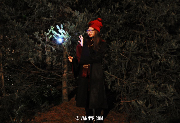 harry-potter-osaka-19