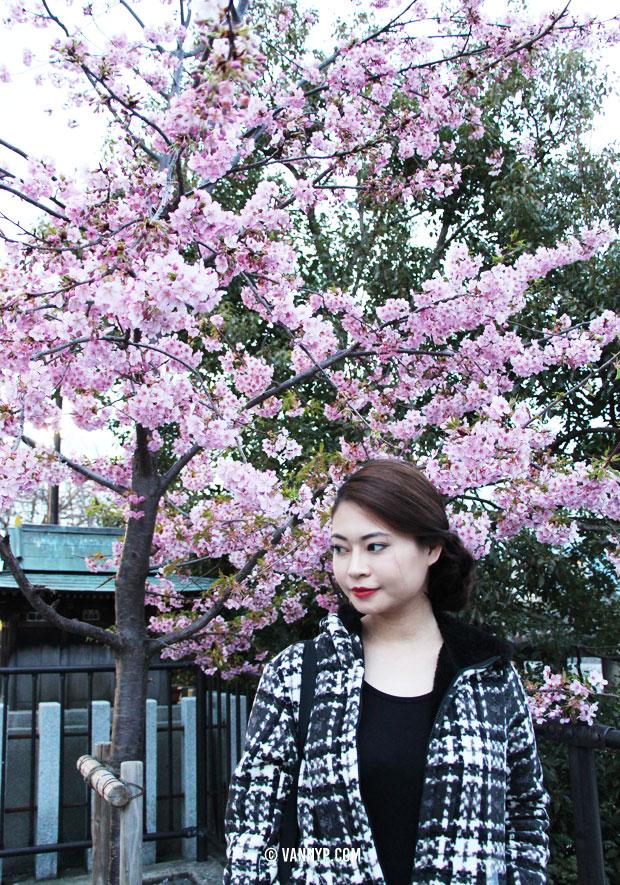kimono-kyoto-fushimi-inari-taisha-24